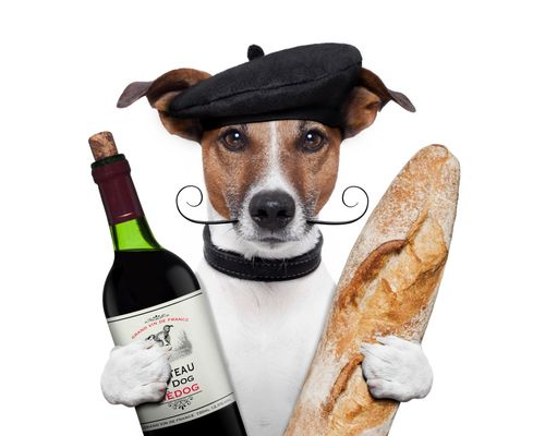 french_dog